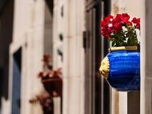 Hängende Blumen Lizenzfreies Stockbild
