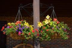 Hängende Blumen-Körbe Stockfotos