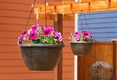 Hängende Blumenkörbe, die am Gitter hängen lizenzfreies stockbild