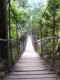 Hängende Brücke lizenzfreie stockfotografie