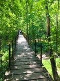 Hängende Brücke am Patapsco-Nationalpark in Maryland Lizenzfreie Stockfotos