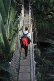Hängende Brücke und ein Wanderer Stockbild