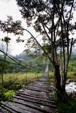 Hängende Brücken-Aufhebung stockfotos