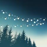 Hängende dekorative Urlaubspartylichter Weihnachten, Geburtstag, Hochzeit, Gartenfestgrußkarte, Einladung Wald, Bäume Stockbilder