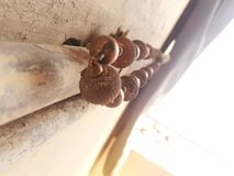 Hängende Halskette auf Rohr stockfoto