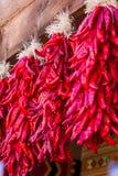 Hängende Paprika ristras Stockbilder