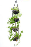 Hängende Zimmerpflanze, Häkelarbeitarbeit Stockfotografie