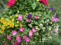 Hängender Korb-Blumenstrauß stockbild