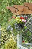 Hängender Korb der Blumen Stockbild