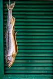 Hängender Trockenfisch Stockfotografie