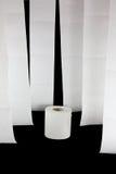 Hängendes Toilettenpapier mit einer Rolle stockbilder