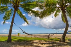 Hängmatta i Paradise nära stranden i Nadi, Fiji royaltyfri bild