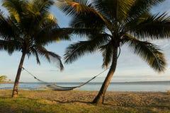 Hängmatta mellan palmträd, Fiji Fotografering för Bildbyråer