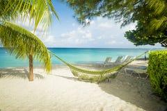 Hängmatta på en karibisk strand Fotografering för Bildbyråer