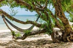 Hängmatta på en sandig strand Arkivfoton