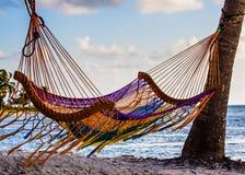 Hängmatta på stranden Royaltyfri Fotografi
