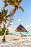Hängmatta på stranduppsättningen mellan två träd med skugga på vit royaltyfri bild