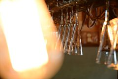 Hängning för coctailexponeringsglas från taket Royaltyfri Fotografi