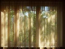 Hängt upp gardiner fönster i ett mörkt rum Arkivbilder