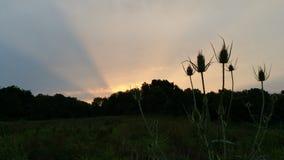 Här kommer det soluppgång Royaltyfri Fotografi