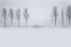 här vinter Arkivfoton
