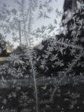 här vinter royaltyfri fotografi