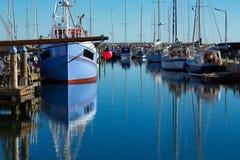 Härbärgera med fiskebåtar på norden av Danmark Royaltyfri Foto