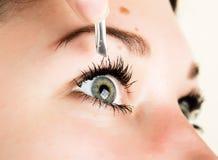 Härlig ögonfransförlängning för ung kvinna Kvinnan synar med långa ögonfranser Begrepp för skönhetsalong fotografering för bildbyråer