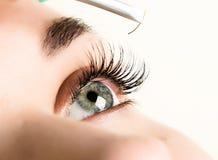 Härlig ögonfransförlängning för ung kvinna Kvinnan synar med långa ögonfranser Begrepp för skönhetsalong Royaltyfria Foton