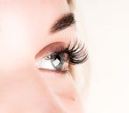 Härlig ögonfransförlängning för ung kvinna Kvinnan synar med långa ögonfranser Begrepp för skönhetsalong arkivbilder