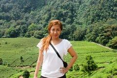 Härlig asiatisk flicka, kvinna som in poserar i framdel av tekolonin Arkivfoton