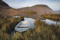 Härlig Autumn Fall landskapbild av Crummock vatten på sunrien royaltyfri fotografi