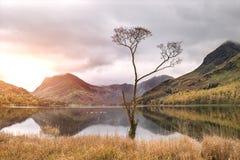 Härlig Autumn Fall landskapbild av sjön Buttermere i sjön royaltyfria foton