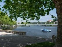 Härlig aveflod under trädet, Vila do Conde, Porto, Portugal fotografering för bildbyråer