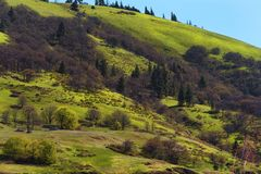 Härlig backe som ses från den Columbia River huvudvägen Arkivfoton