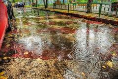 Härlig bakgrund av våt asfalt med regndroppar
