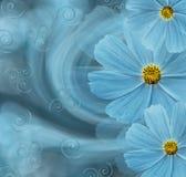 Härlig bakgrund för blom- turkos vita tulpan för blomma för bakgrundssammansättningsconvolvulus Vykort med turkosblommor av tusen Arkivbilder