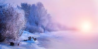 Härlig bakgrund för vinterlandskapplatsen med snö täckte träd och den med is floden arkivbild