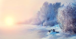 Härlig bakgrund för vinterlandskapplatsen med snö täckte träd och den med is floden royaltyfri fotografi