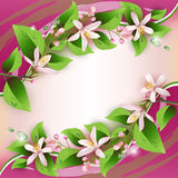 Härlig bakgrund med fina blommor vektor illustrationer