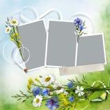 Härlig bakgrund med ramar för ett foto och en bukett av blommor från kamomillar och blåklinter vektor illustrationer