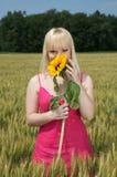 härlig behind blond flickanederlagsolros Royaltyfri Foto