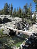 Härlig bergliten vik i toppiga bergskedjan Nevada av Kalifornien, USA. Arkivbild