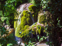 Härlig bergströmvattenfall Bigar bergvattenfall, Caras, Rumänien Arkivbilder