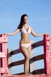 härlig bikinikvinna Royaltyfria Bilder
