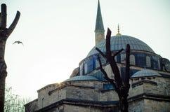 Härlig bild av en av Istanbul moskéer på solnedgång Royaltyfri Fotografi