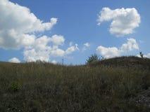 Härlig bild av naturen Royaltyfria Foton
