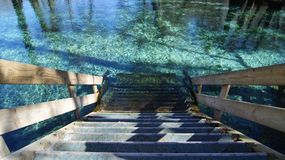 Härlig bild av wood trappa som går ner i det kristallklara vattnet för turkos på Ginnie Springs, Florida royaltyfri bild