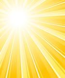 Härlig bländande sunburst. Vertikal bakgrund. Arkivbild
