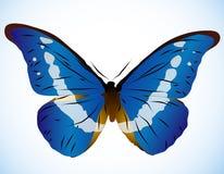 härlig blå fjäril Royaltyfria Foton